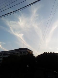 2009年9月5日 九州に龍の目を入れに行くご神事に参加 することが決まっていました。 仕事の帰りにとっても可愛い龍の雲が…