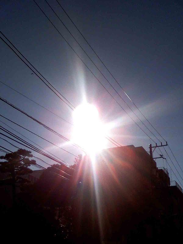 2010年12月17日 朝の太陽です。とってもエネルギッシュ! 何かまあるいのが映っていますが 何かは解りません。よく映ります