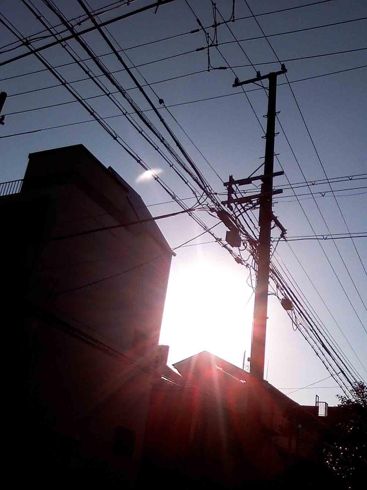 2010年12月20日 朝の太陽です