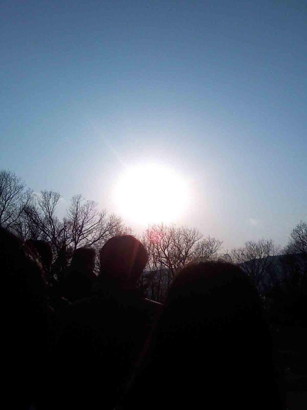 2011年1月9日 夕方やっと光がさしてきまいた。