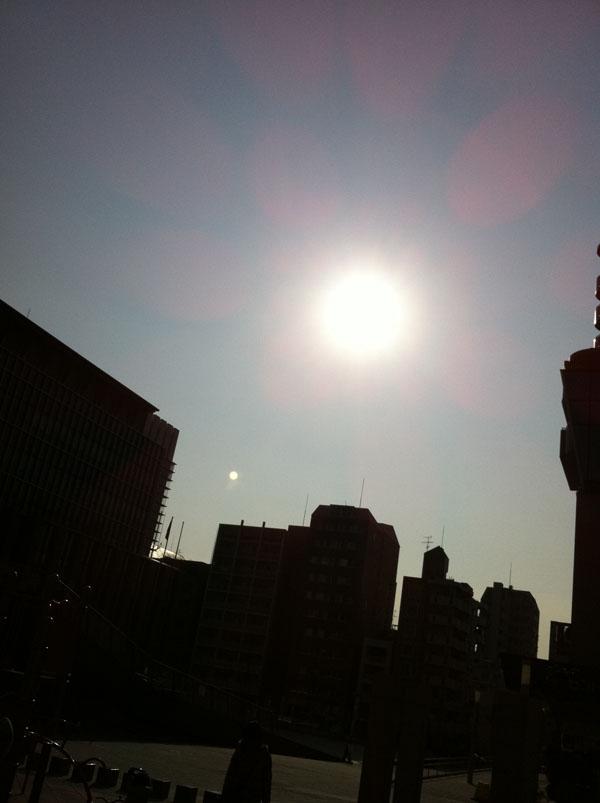 2011年2月8日 曇った日が多かったりで 久しぶりの太陽ですが、 薄雲が広がっています。
