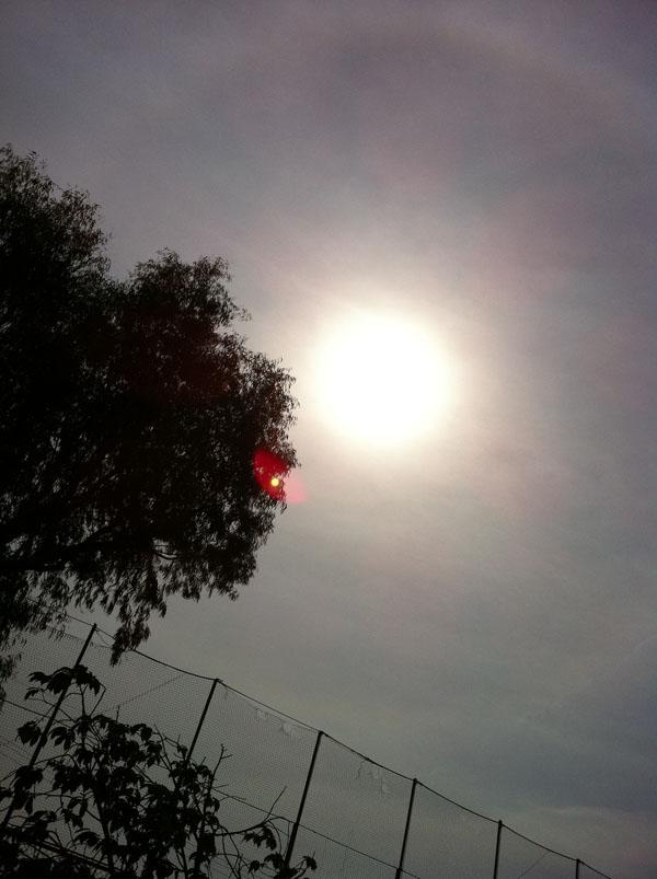 2011年5月16日 太陽に輪が掛かっています