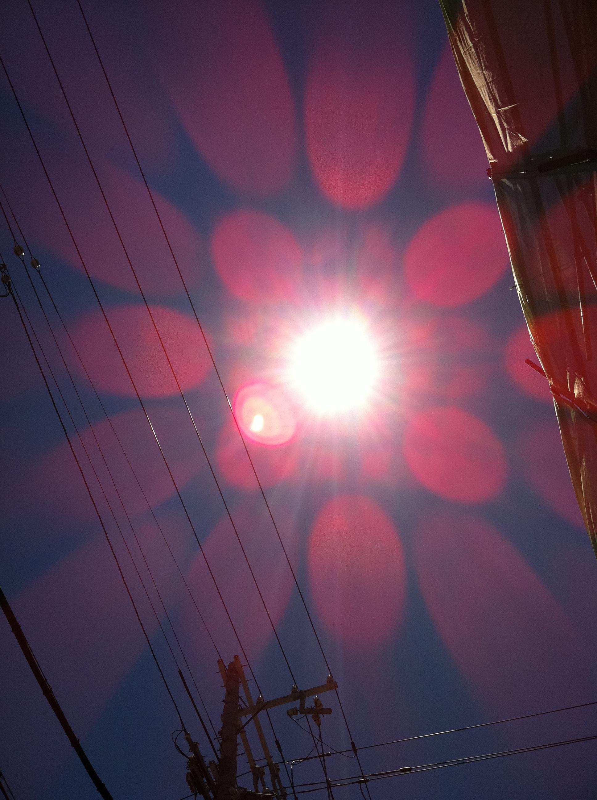 2011年7月14日 いきなり夏の太陽のようです