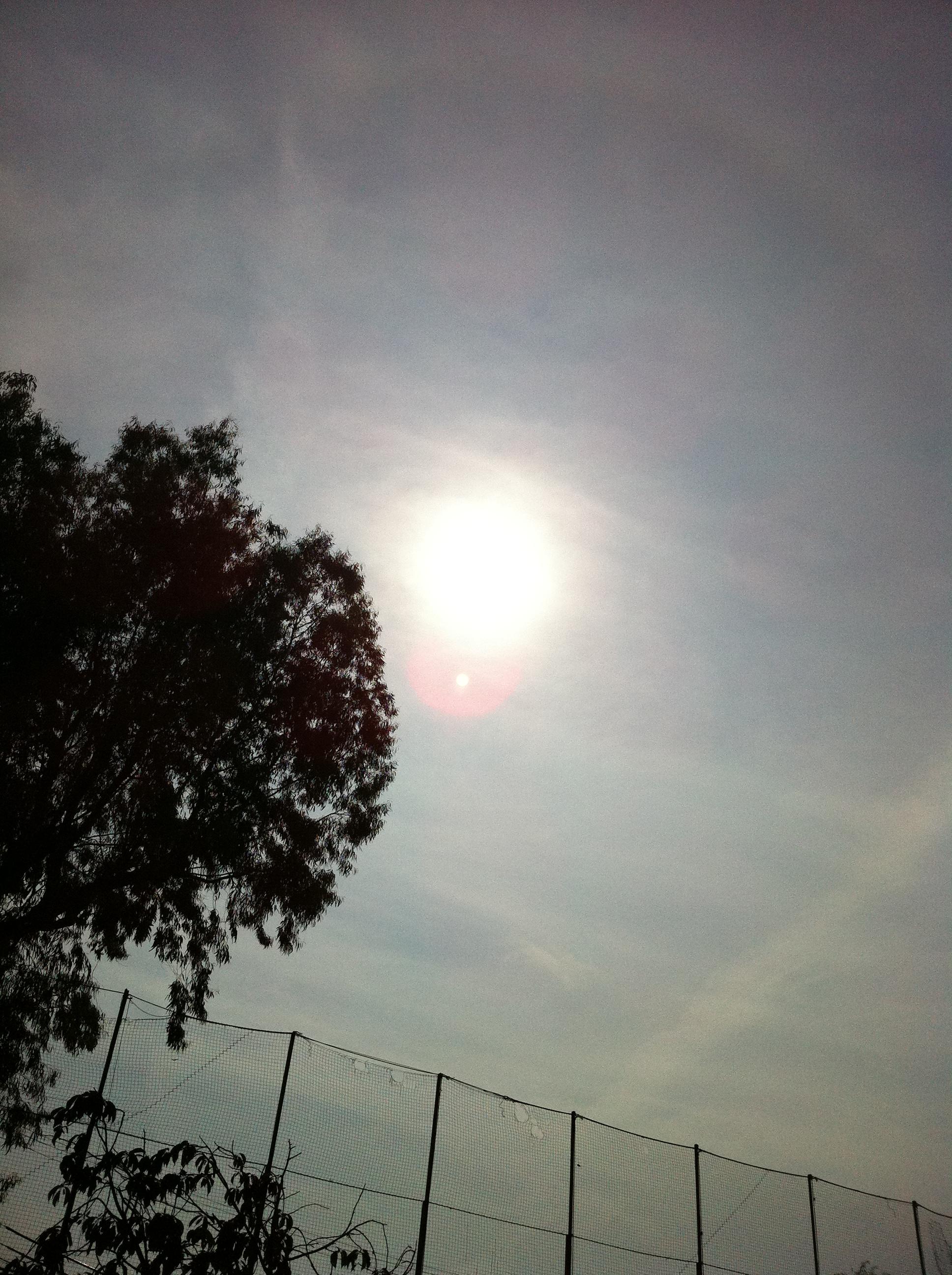 2011年8月1日 太陽の輪が気になります