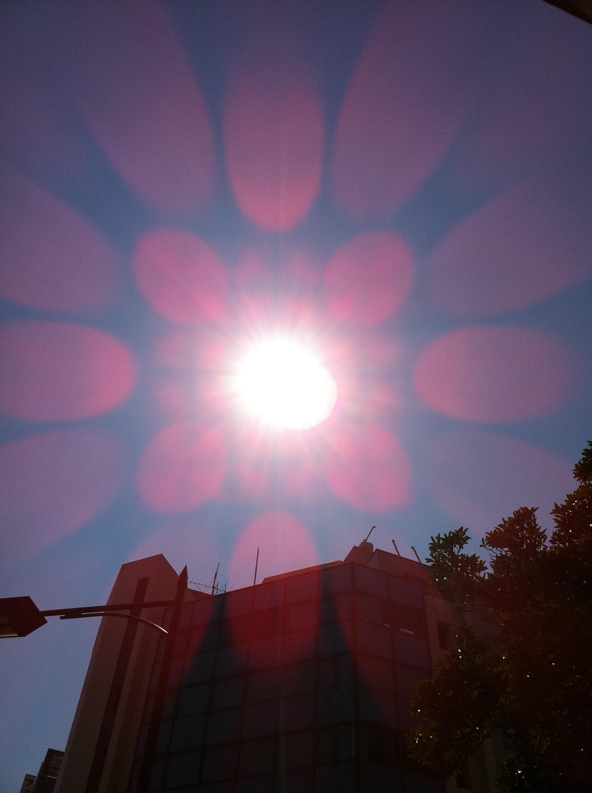 2011年9月27日 良い天気です。 周りが何となく金色っぽい?