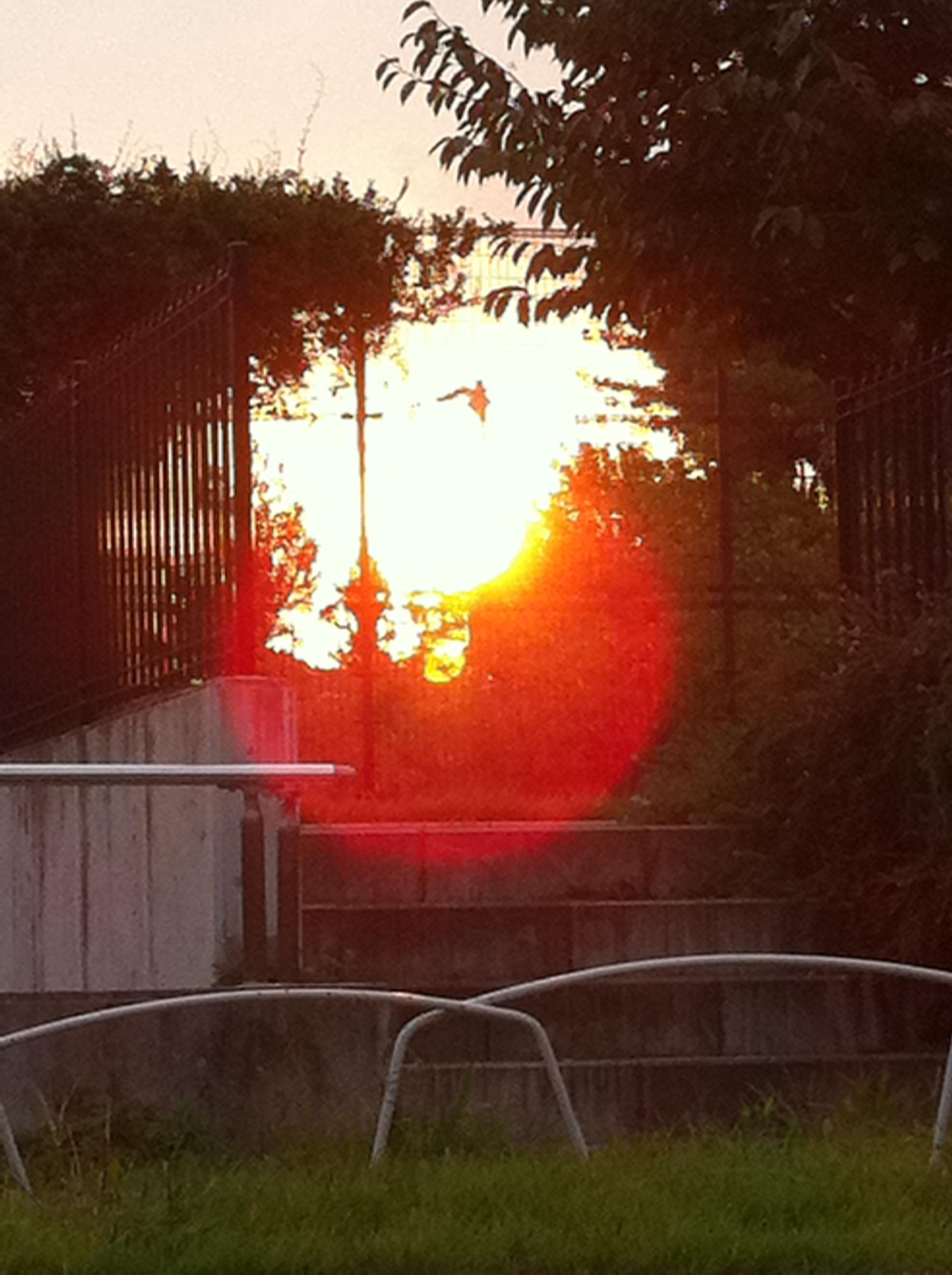2011年9月29日 夕日を正面から撮ったら 面白い写真になりました