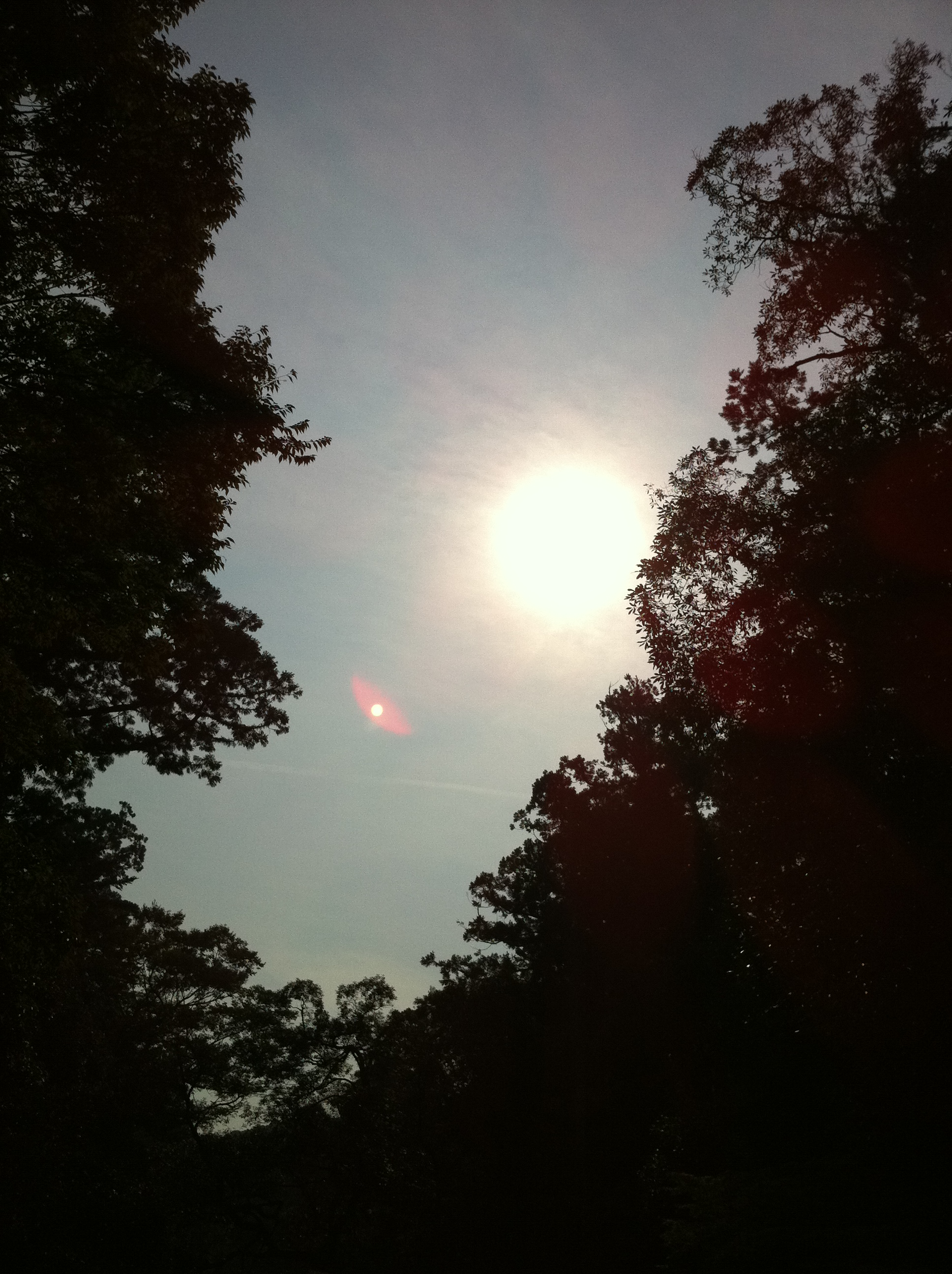 2011年10月10日 この日は、雲が少しありました