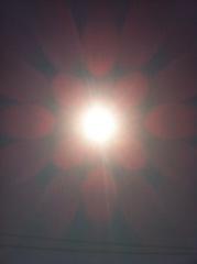 2012年3月29日 やっと、気持ちの良い 天気になりました