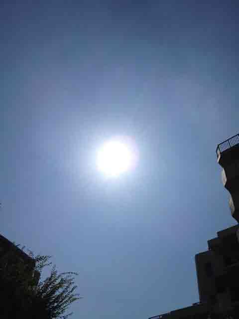 9月7日 まだまだ夏の太陽?
