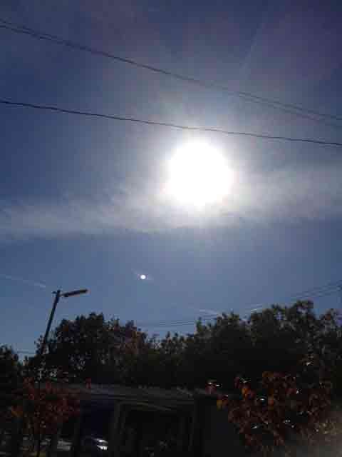 11月25日 太陽が柔らかい