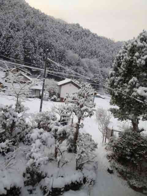 1月1日 元旦から雪に埋もれています