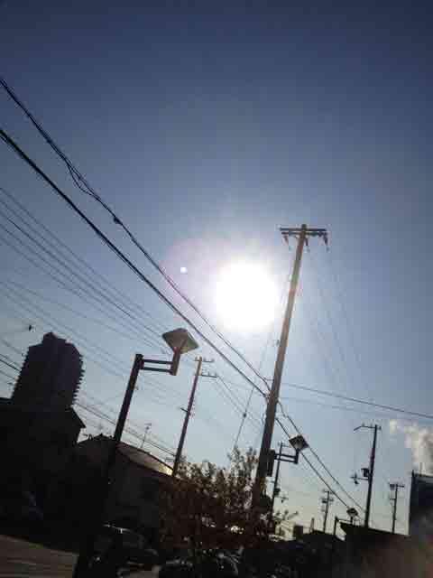 1月24日 穏やかな冬の晴れ間