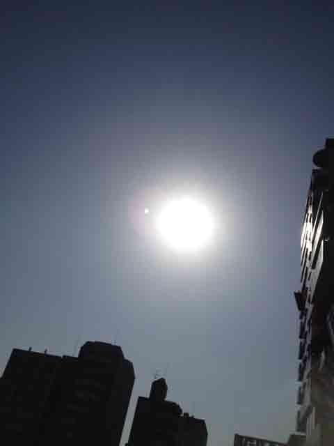 2月12日 太陽は暖かいですね