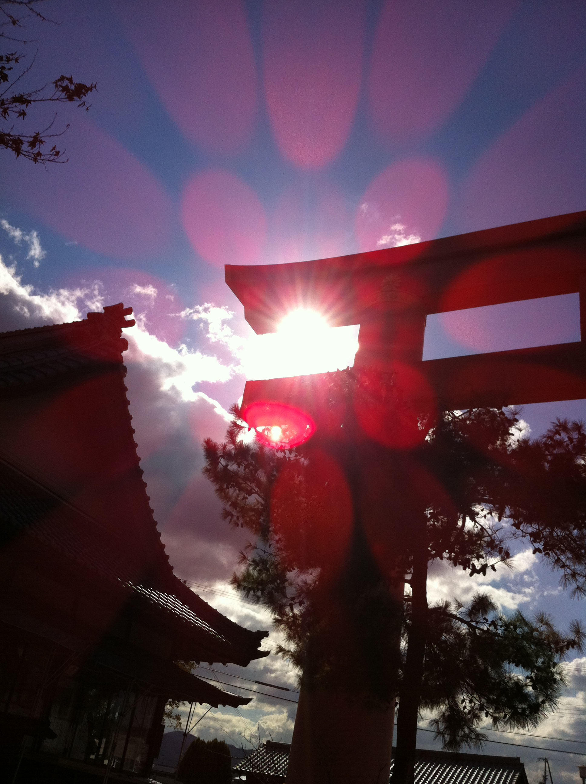 2011年11月21日 鳥居越しの太陽が とても綺麗でした