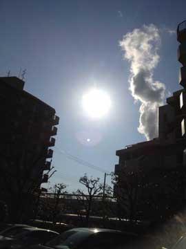 3月4日太陽が優しい^^