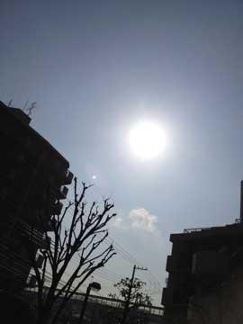 6日の太陽。暖かく照らしてくれている