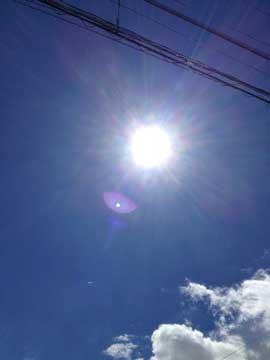 7日太陽は、眩しくなってきました