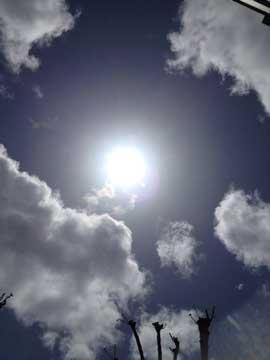 21日太陽の周り、何となく丸いよね?
