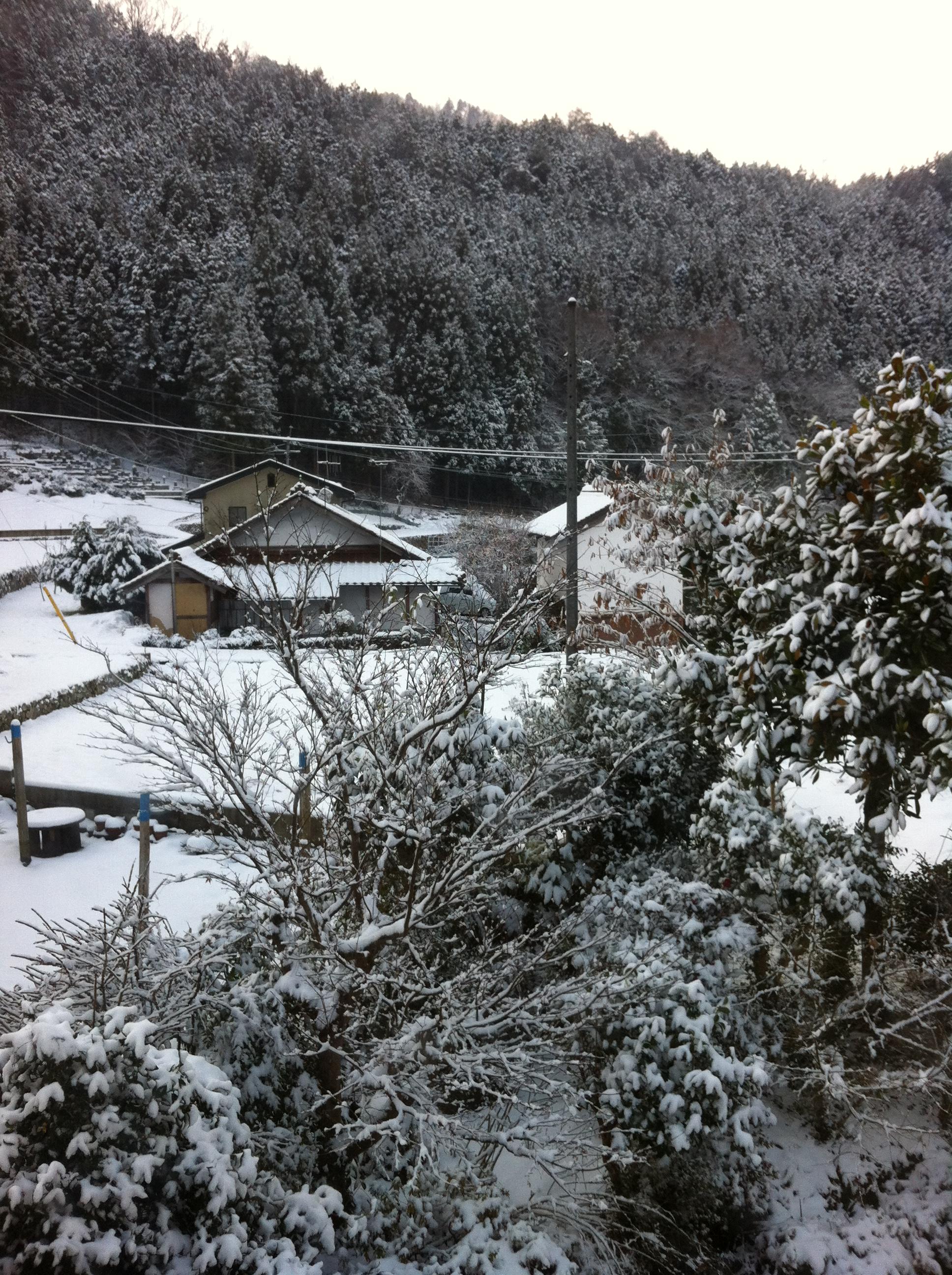 2012年1月2日 雪の正月です 旦那の田舎です
